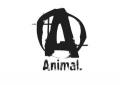 Animalpak.com